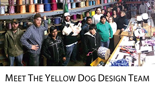 Southern-Dawg-Premium-Dog-Leash-Seersucker-with-Comfort-Grip-Handle-Made-in-The-USA-by-Yellow-Dog-Design-0-2
