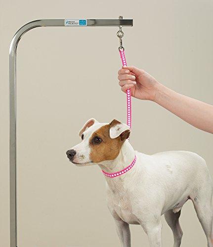 Top-Performance-Basic-Grooming-Loops-Versatile-Nylon-Loops-to-Secure-Dogs-on-Tabletops-While-Grooming-18-4-Pack-0-0