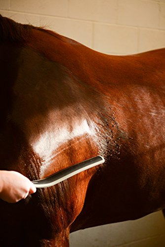 Wahl-Professional-Animal-Equine-Sweat-Scraper-858713-0-0
