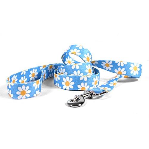 Yellow-Dog-Design-Blue-Daisy-Dog-Leash-0