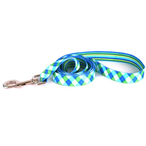 Yellow-Dog-Design-Blue-and-Green-Argyle-Dog-Leash-1-Wide-and-5-60-Long-Large-0