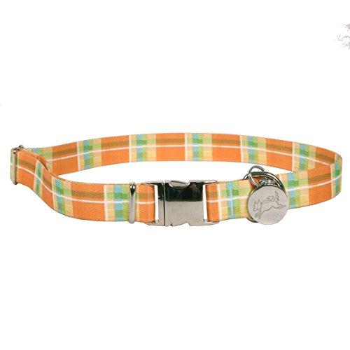 Yellow-Dog-Design-Southern-Dawg-Madras-Orange-Premium-Dog-Collar-0